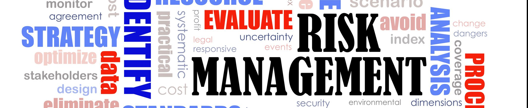 Risk assessment and management training
